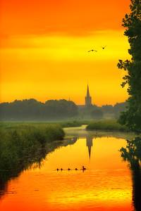 Dutch Morning