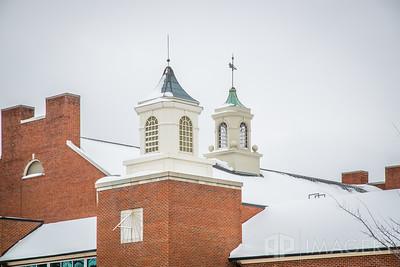 Snowy Cupolas