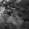 Pond -- Ferrari-Carano Winery, Healdsburg, California (April 2011)