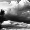 Clouds (2) -- Chelan, Washington (April 2010)