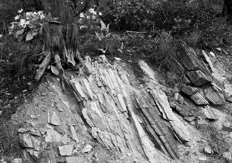 Rock Face (2) -- Echo Valley,  Chelan, Washington (May 2011)
