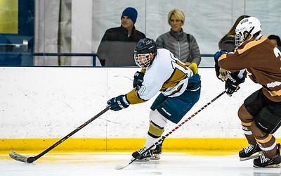 2016-01-29-NAVY-Hockey-vs-Lehigh-29