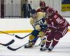 2017-01-27-NAVY-Hockey-vs-Alabama-33