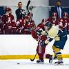 2017-01-27-NAVY-Hockey-vs-Alabama-31