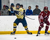 2017-01-27-NAVY-Hockey-vs-Alabama-43
