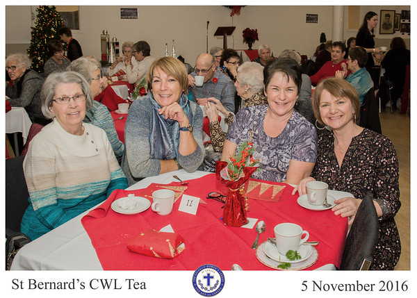2016 St Bernard Tea