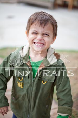 tinytraits_Sunflower_Ari B Kolodny-1