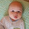 tinytraits_Sweet pea_Jason B Blalock-10