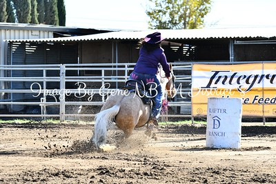 Barrel Race Rafter D  Ranch 11/5/17 Open Draw 31-56