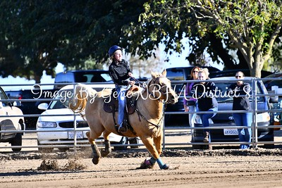 Rafter D Ranch 11/5/17 Novice and Buckle Winners