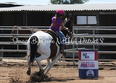 2- NBHA Hot Line Summer Buckle Series At Rafter D Ranch August 23rd. 2015 -Open Draw 31-54
