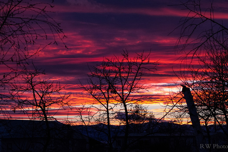 Sunset Dec 16
