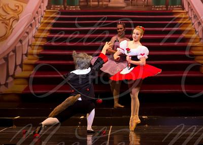 Act 3 - Sleeping Beauty