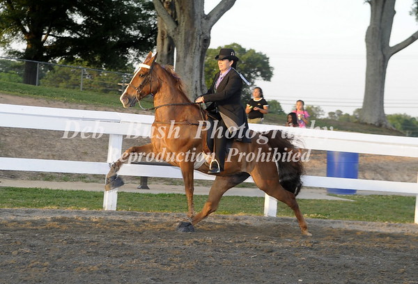 CLASS 18  AMATEUR RIDERS 50 & OVER