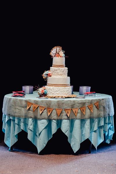 Attix Wedding 2015Attix Wedding142
