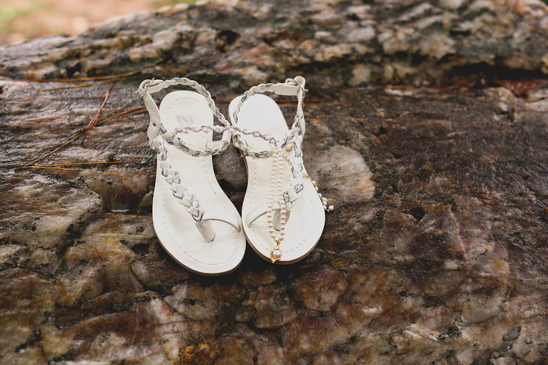 Attix Wedding 2015Attix Wedding104