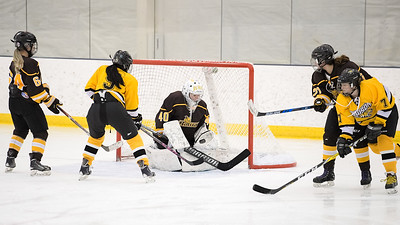 Towson vs Rowan during the inaugural Crab Pot Tournament at the McMullen Hockey Arena in Annapolis, Maryland on 2/23/2018. (Photo by Michael McSweeney for USNA).