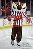 Bucky Badger entertains fans during a break in the game between the Minnesota Golden Gophers and the Wisconsin Badgers at the Kohl Center in Madison, WI.  Minnesota defeated Wisconsin 5-2.   Mandatory Credit: John Rowland / Southcreek Global