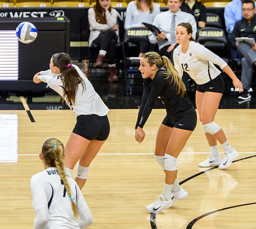 The PAC12 Women's Volleyball match between the University of Colorado Buffaloes (CU) and the Oregon State Beavers (OS) at the Coors Event Center on the University of Colorado campus in Boulder, Colorado.  Final score of the match was the CU Buffaloes - 3 games and the Oregon State Beavers - 2 games.