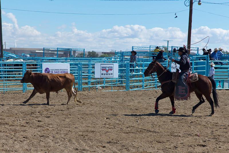 Roping the steer