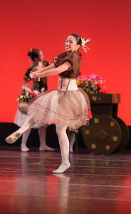 NCDC Don Quixote I 2014-29