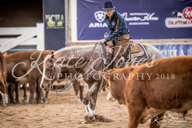Final Amateur Classic-830259