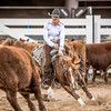 Non Pro Futurity Amateur Final-830176