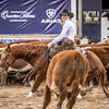 Non Pro Futurity Amateur Final-830169