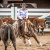 Non Pro Futurity Amateur Final-830156