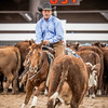 Non Pro Futurity Amateur Final-830141