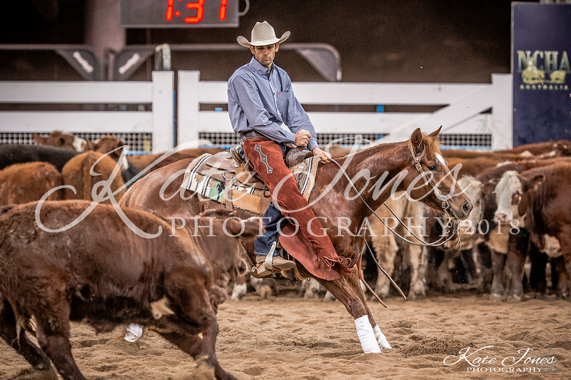 Non Pro Limited Final-830505