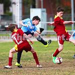 26-7-15. NCMJFC  U13 Blue  lost to Monbulk Rangers FC  2 - 7 at Caulfield Park. Photo: Peter Haskin