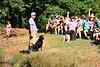 HUNTING DOG_06212019_018