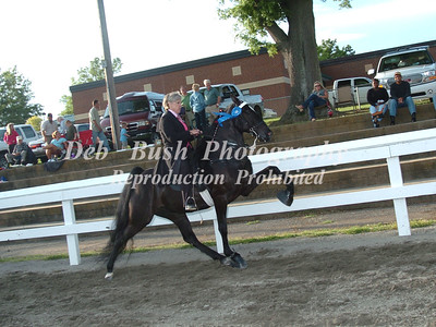 CLASS 15  AMATEUR RIDERS 50 & OVER SPECIALTY