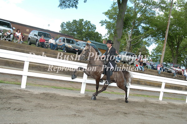 CLASS 3 - 2 YR OLD OPEN