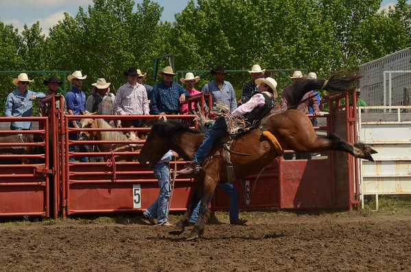 Elgin NDRA Rodeo - 6-9-2013