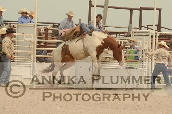 Blaisdell NDRA Rodeo - June 28, 2015