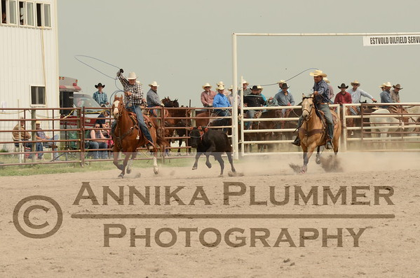 Team Roping-SBlaisdell-06-28-2015