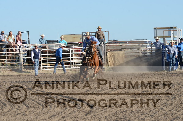 Calf Roping - Elgin NDRA - 06-03-2017