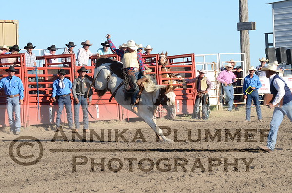 Saddle Bronc - Elgin NDRA - 06-03-2017