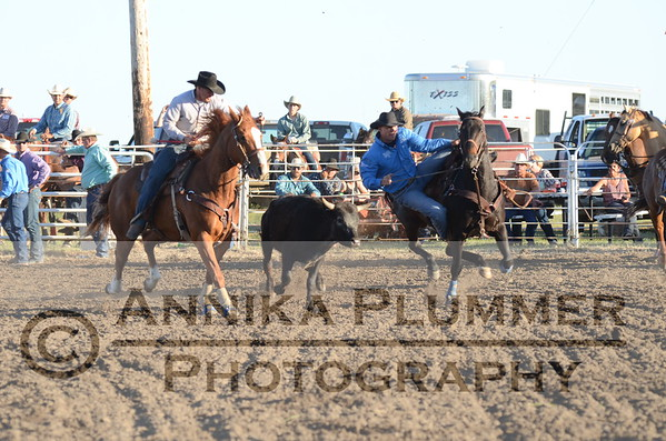Steer Wrestling - Elgin NDRA - 06-03-2017