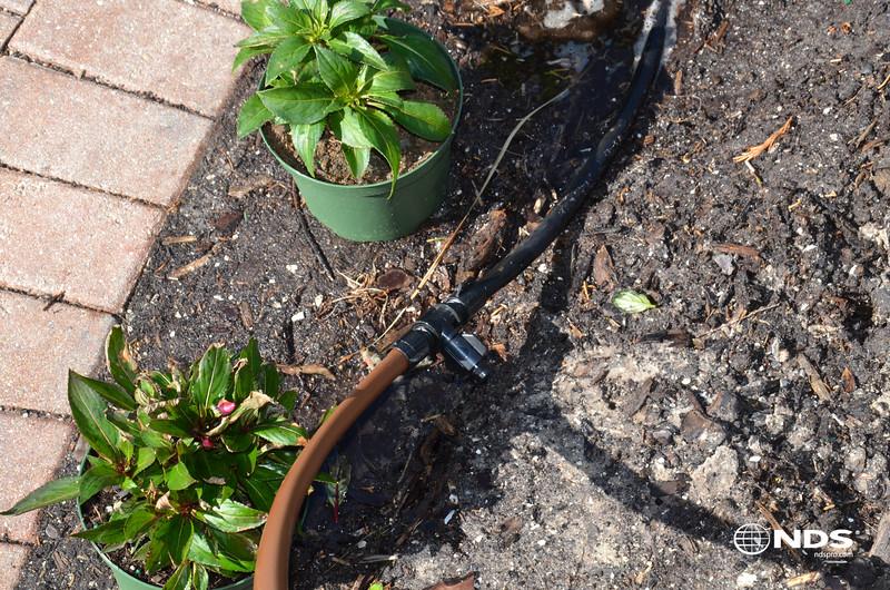 Drip Tubing - In Use