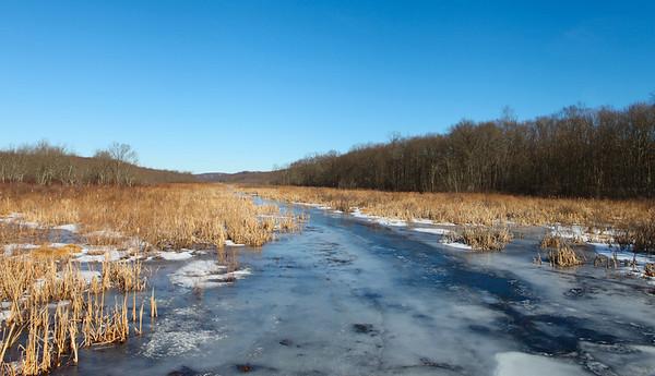 Raritan River headwaters, Black River Wildlife Management Area, Chester, NJ.