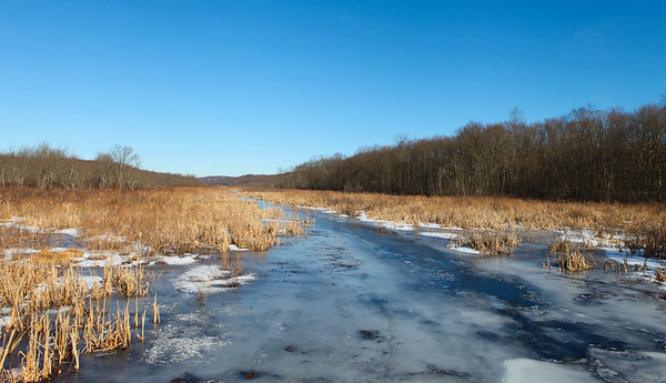 Raritan River headwaters, Black River Wildlife Management Area, Chester, NJ.