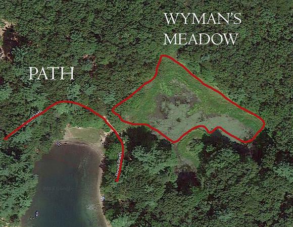 WYMANS MEADOW, WALDEN POND