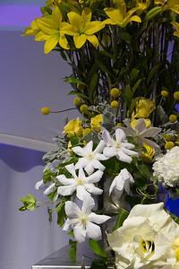 NEFE 2015  Rene van Rems Stage Show2015_017