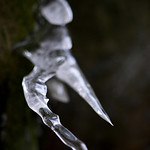 Princess Ledges Ice Formations : Princess Ledges Nature Preserve: a 46 acre preserve located in Brunswick Hills Township, Ohio.