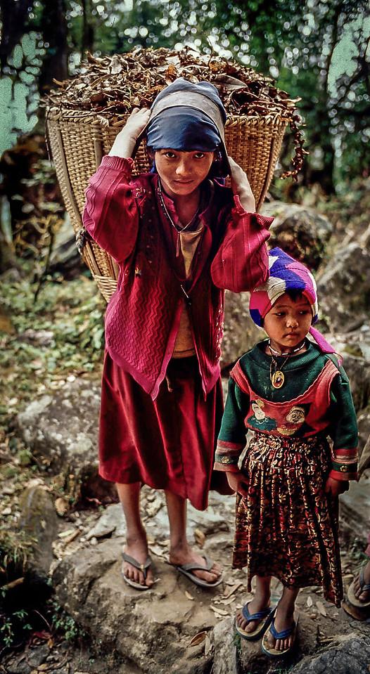Sisters gathering leaves, Langtang