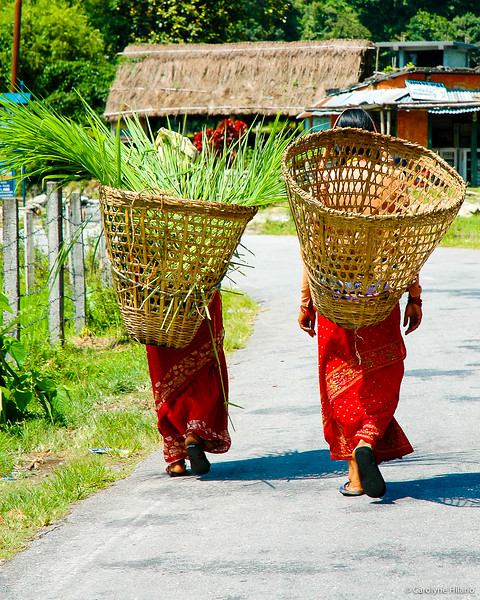Carrying Baskets<br /> Pokhara Valley<br /> Pokhara, Daski District