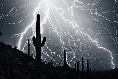 ELECTRIFYING DESERT